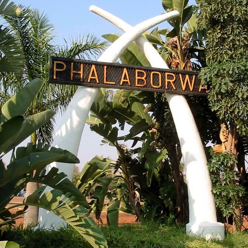 Phalaborwa Statue Elephant Tusks